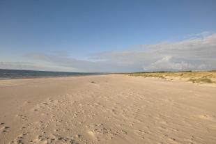 Zeme apbūvei 8, 76 ha platībā(jūras robeža 340 m) 4 km no Liepājas Lietuvas virzienā