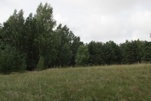 Land plot  of 1 ha Saraiki, 2 kilometres from the Baltic Sea, 25 km from the centre of Liepaja