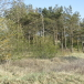 Land plot on 2.93 hectares (with a maritime boundary of 301 m) in the  Vergales parish