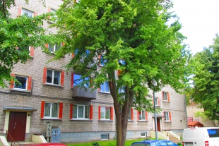1-room apartment with an area of 28.2 sq/m on the street Virsnieku 13 in Old Liepaja, near the park