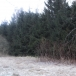 Land an area 0, 69 hectares in Bernati, 15 km from Liepaja, for private or commercial building
