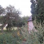 House with a plot of land with an area of 2.83 hectares, to the sea 1 km, in Saraiki