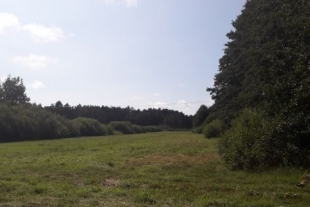 Land plot ( 0.74 ha), in the municipality of Nica 6 km from the border of Liepaja