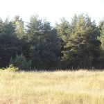 Land plot (8, 76 hectares) 4 km from Liepaja towards Lithuania