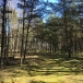 5 hectares of land with a sea border of 119, 7 m, 5 km from the border of the city of Liepaja