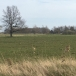3.45 hectares of land 2 km from Liepaja