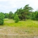Land an area of 3260 sq/m for private building 350 m from the sea